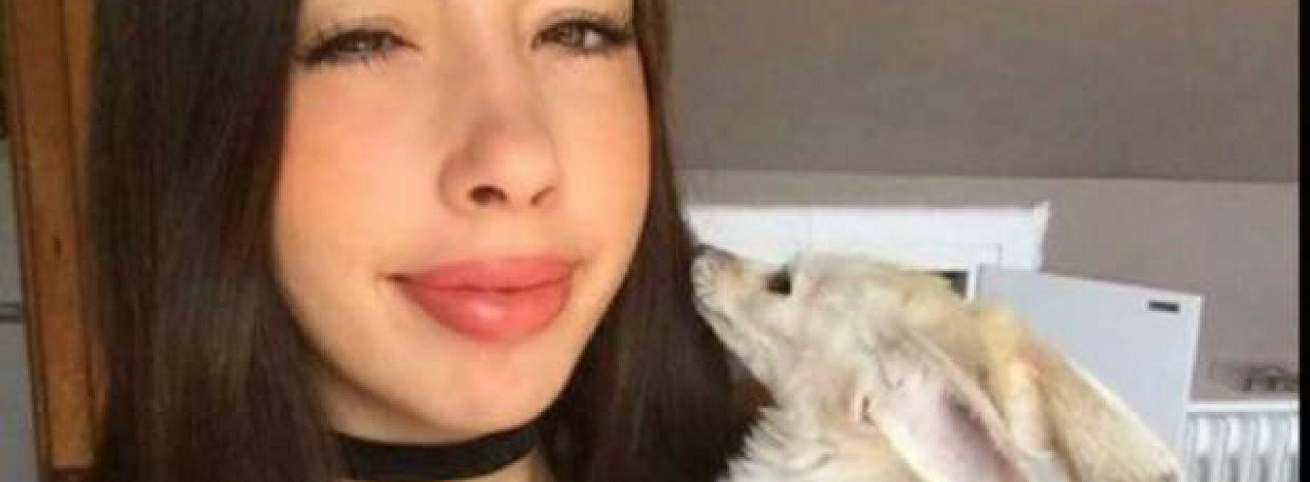 Tunden a 'youtuber' que obligó a un zorro a ser vegano y lo dejó en los huesos
